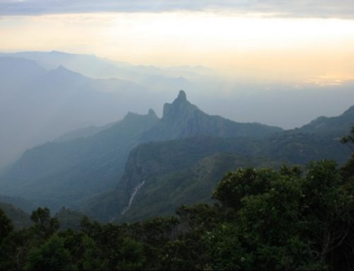 "The Nilgiris or ""Blue Mountains"" of South India"